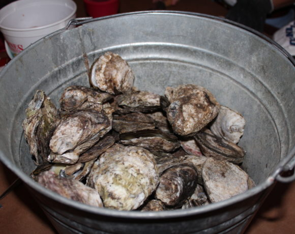 ANNUAL 'OYSTERS FOR THE OGEECHEE' TO FEATURE FOOD, SPECIALTY BREW, AUCTION AND MORE