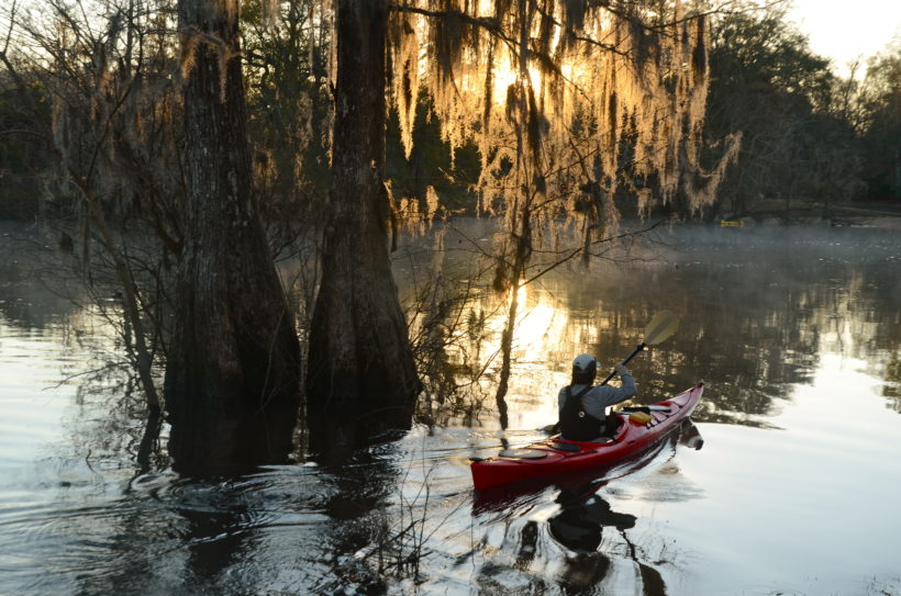 OGEECHEE RIVERKEEPER ANNOUNCES  MAY PADDLE TRIP