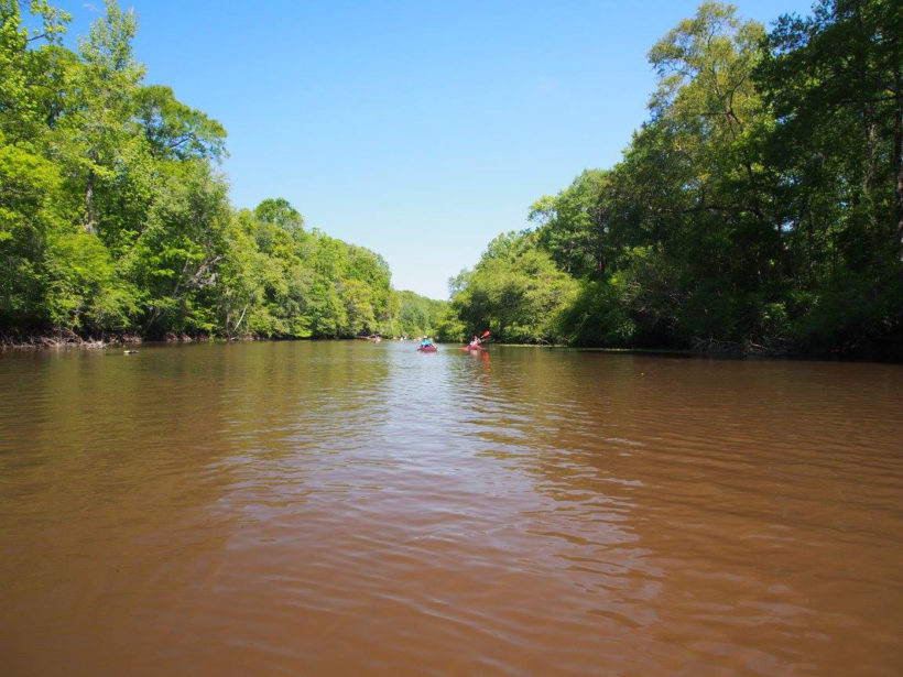 OGEECHEE RIVERKEEPER PADDLE TRIP WITH SAVANNAH STATE RESEARCH PROGRAM INTERNS FROM ACROSS THE U.S.