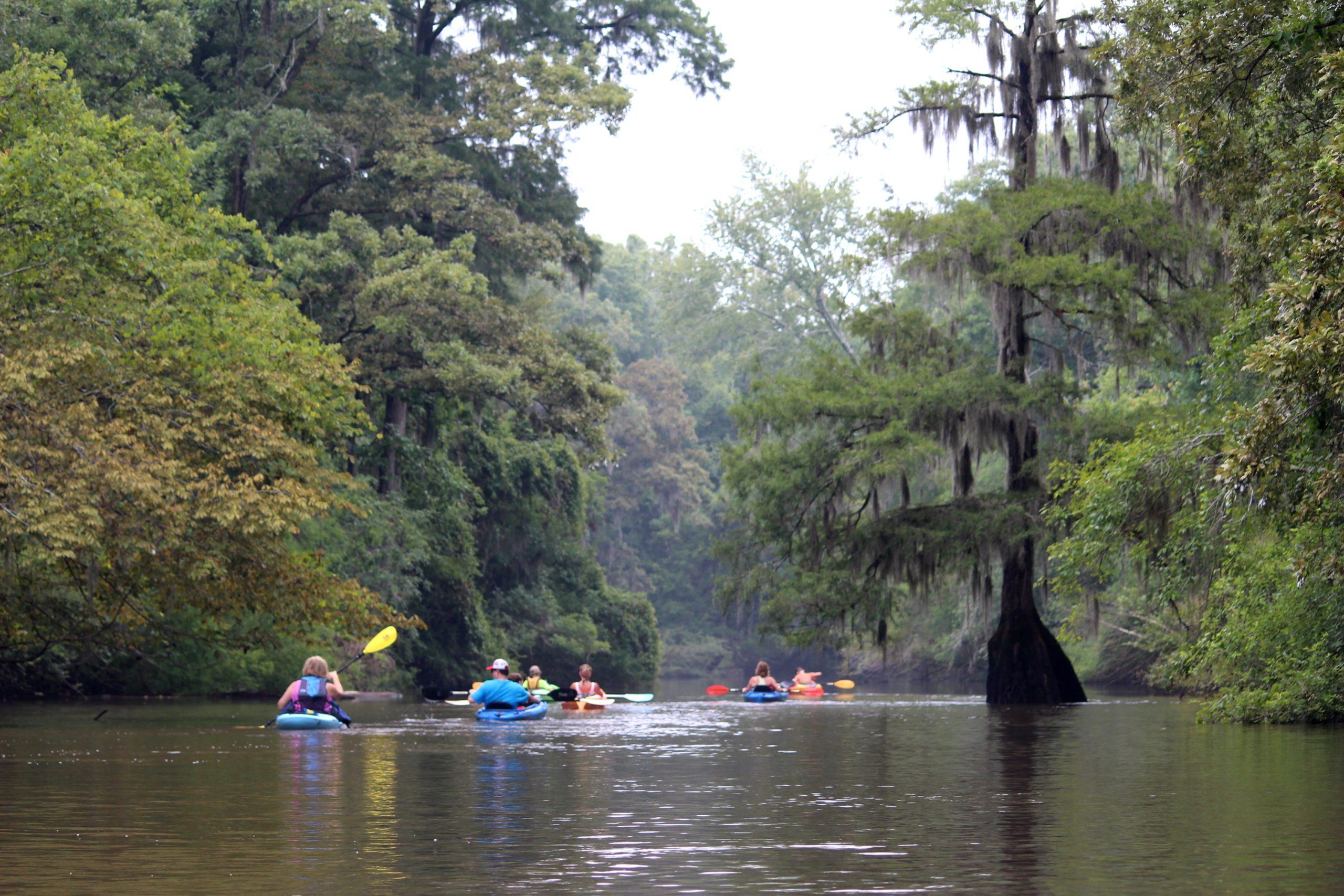 Ogeechee Riverkeeper Paddle Trip
